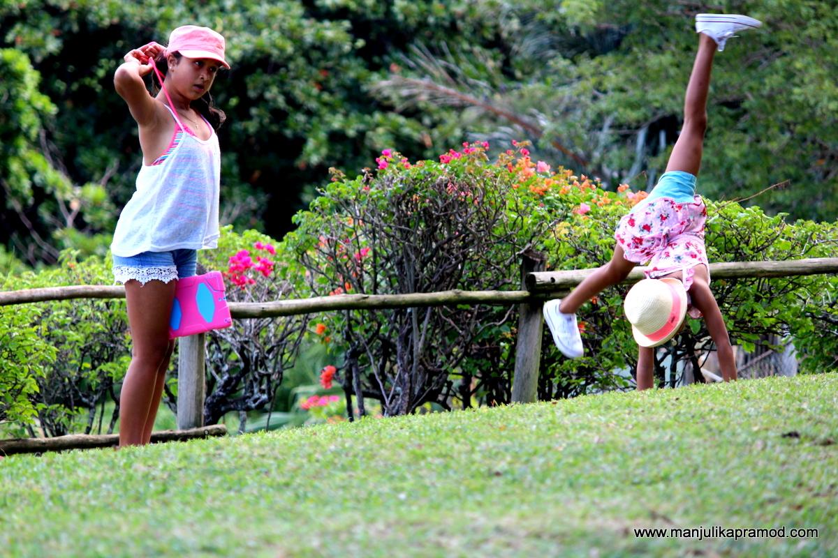 Picture Postcards, Mauritius, Travel photographs