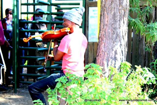 Fourways Farmers Market, Music, Johannesburg, Market, Travel