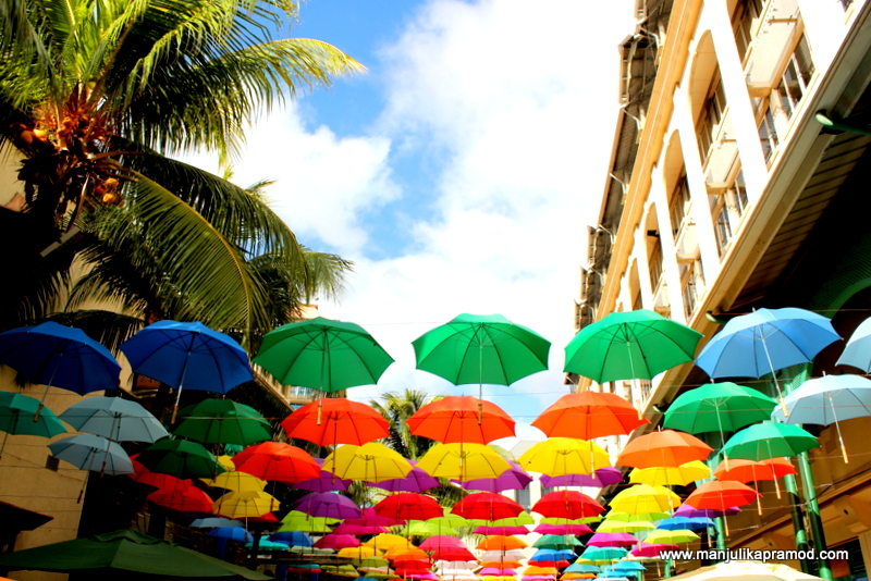 The Umbrella Alley