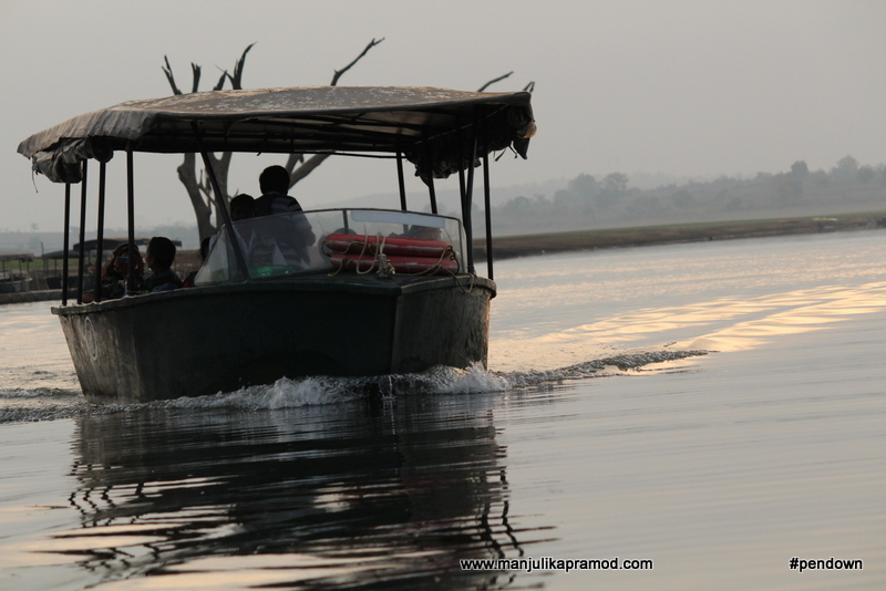 Boat rise for bird watching