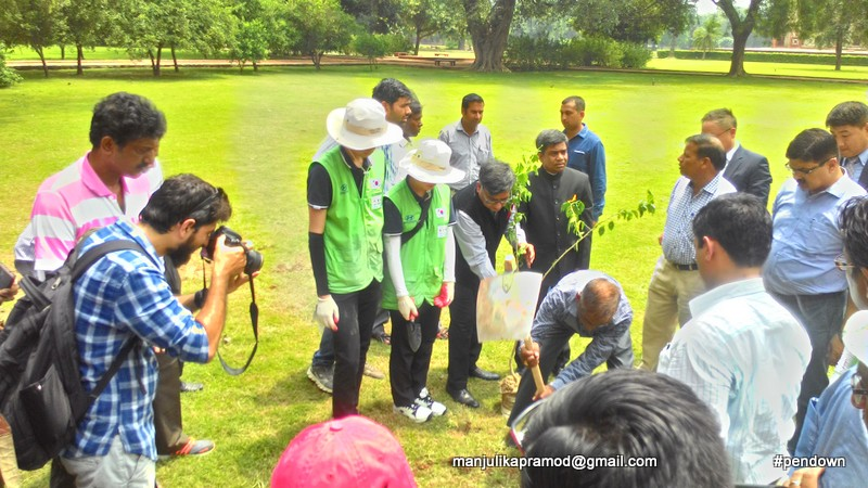 CSR activity, Humayun's tomb, New Delhi