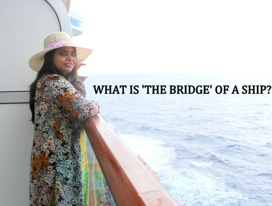 Photoblog : Travel With Me To The 'Bridge' of Majestic Princess