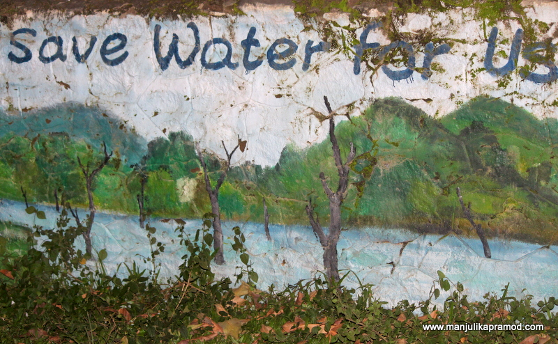 I Was Elated To Find These Murals In Periyar Jungle Thekkady