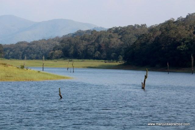 Periyar, Lake, Beautiful, Thekkady