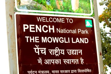 The Mowgliland, Wildlife, Forest reserve