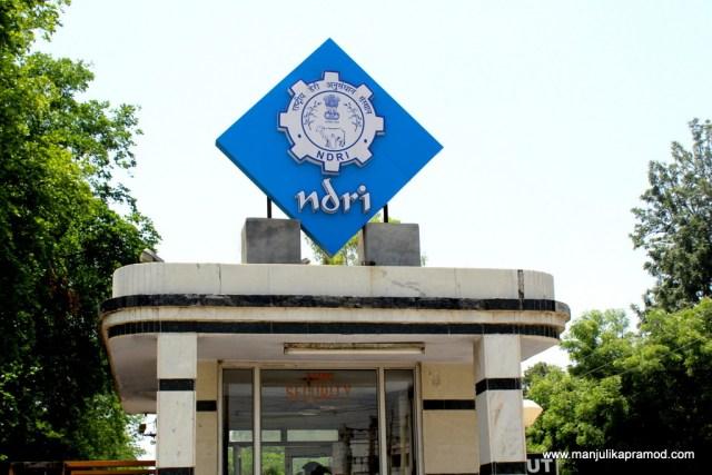 The famous NDRI