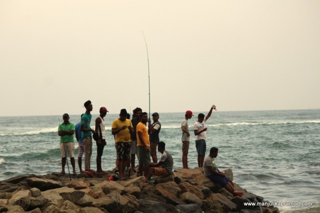 Fishing in Colombo