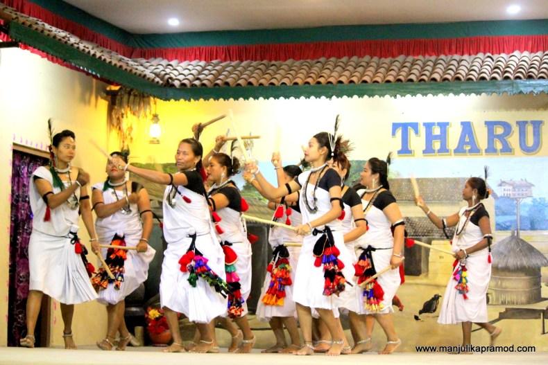 #Tharu #communitiesinNepal #DancesofNepal #TravelChitwan #Chitwan #HTM2018