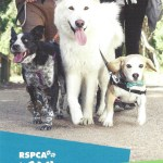 Walk against Cruelty to Animals