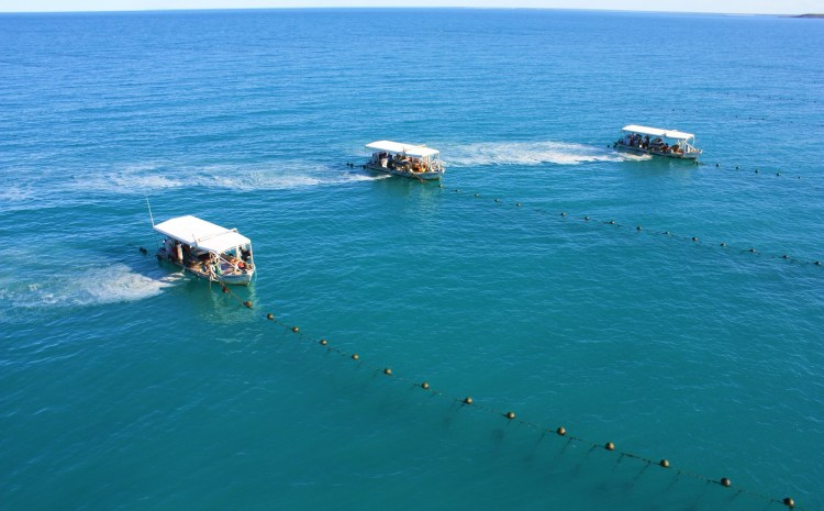 Visit Two Iconic Pearl Farms – Off Sydney and Broome . . .  in one amazing trip!