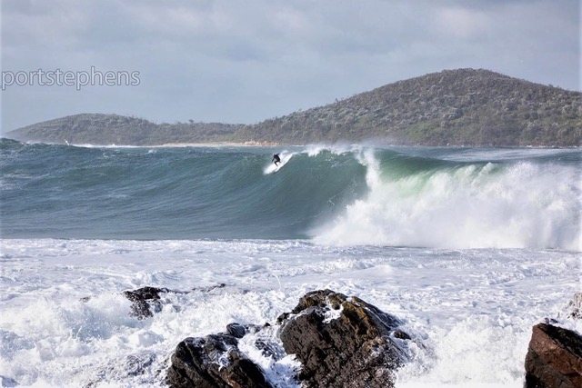 STINKPOT LEAVES IT TO THE SURFERS
