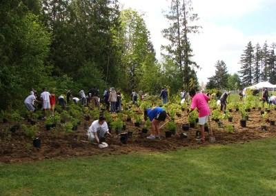 Tamanawis Park Tree Planting