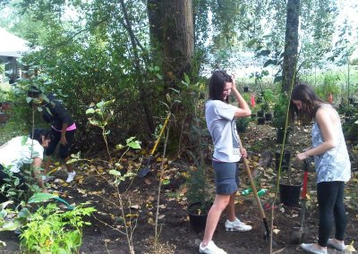Claude Harvey Park Tree Planting