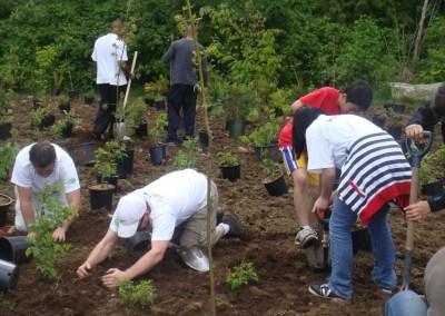 Kiyo Park Tree Planting