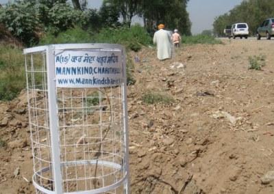 Amritsar Tree Planting