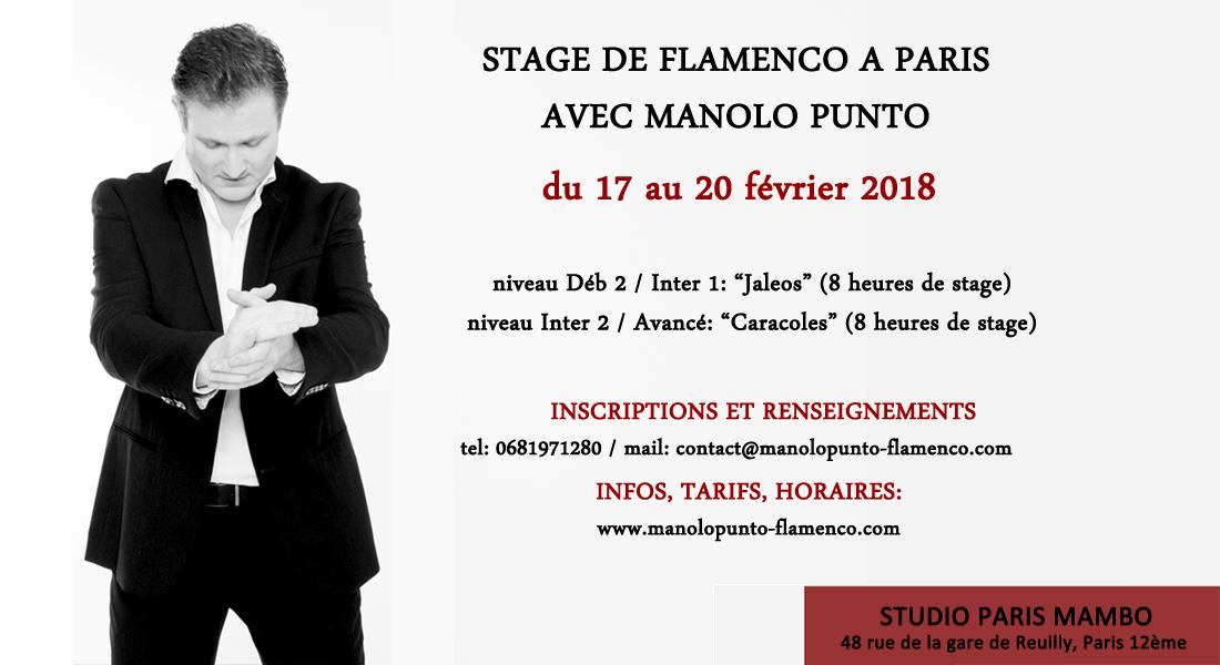 stage flamenco paris