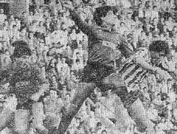 Hoy hace 37 años. Betis 2 Mallorca 0.