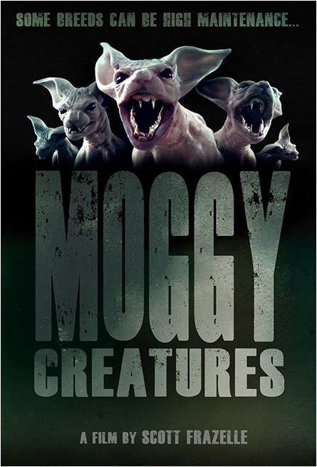 Moggy Creatures