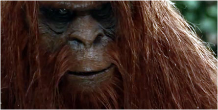 China Bigfoot: The Legend of the Yeren