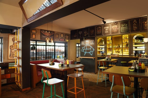 Monkey Bar Bandra Mumbai - India's first Gastropub (1)