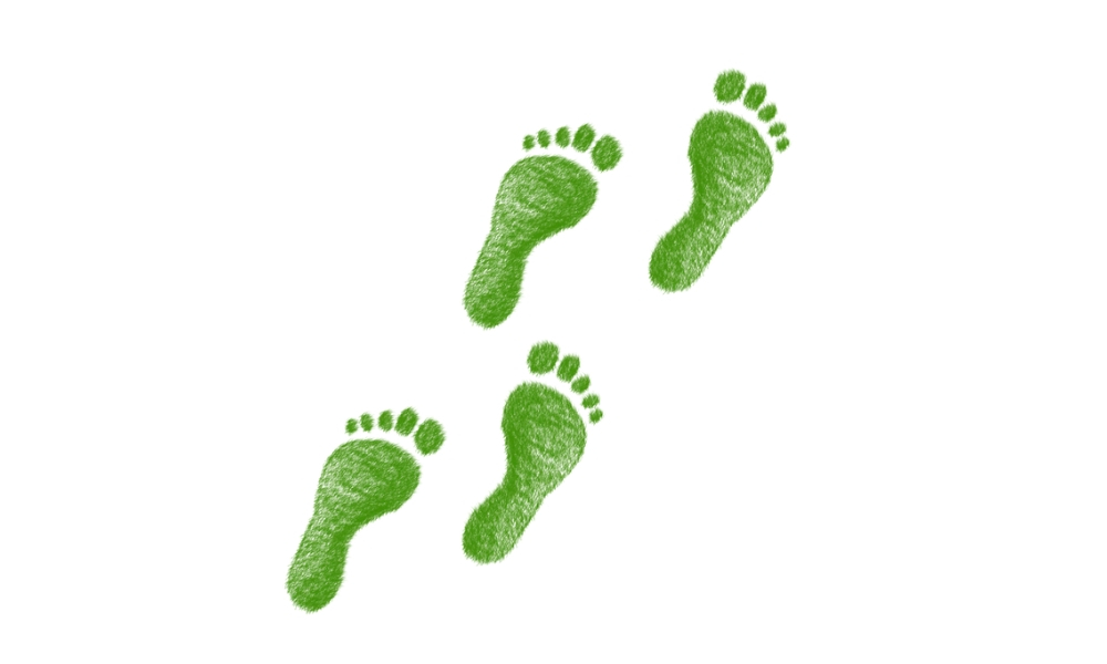 5 Simple Steps You Can Take To Reduce Your Carbon Footprint