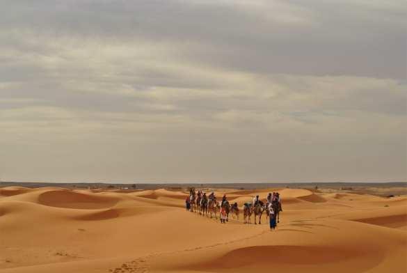trekking on camels at erg chebbi
