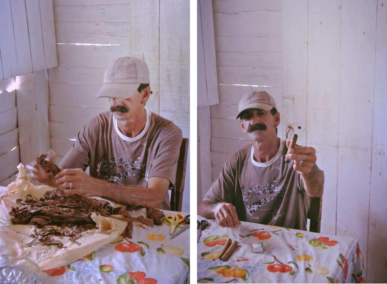 vinales tobacco farmer rolling cigars