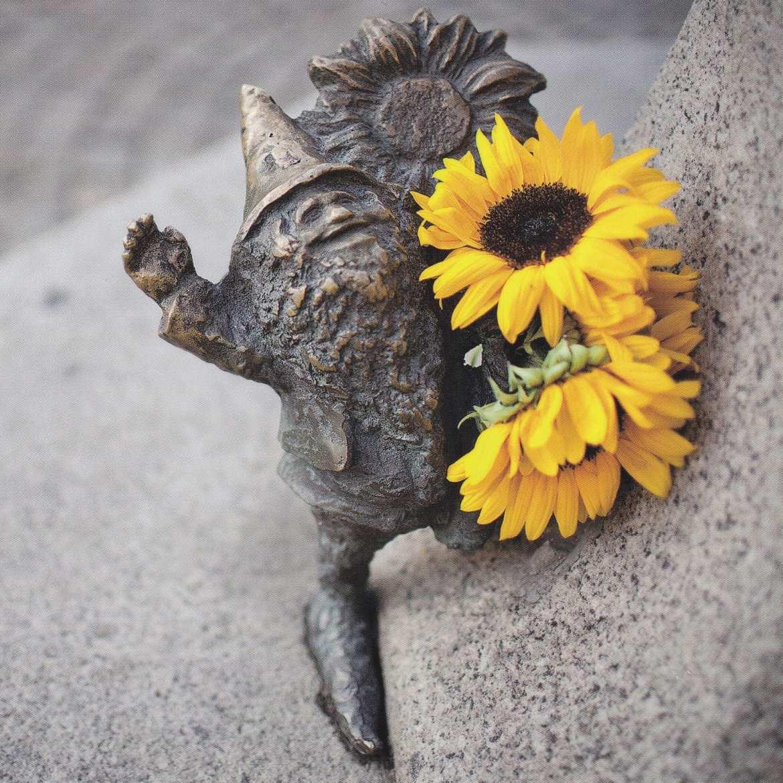 gnome in Wroclaw, poland