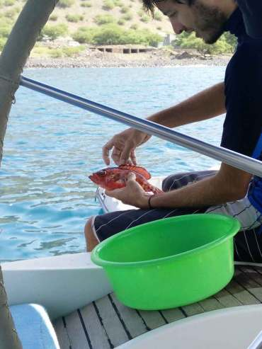 Poisson pêché par Damien sur l'île de Sao Nicolau.