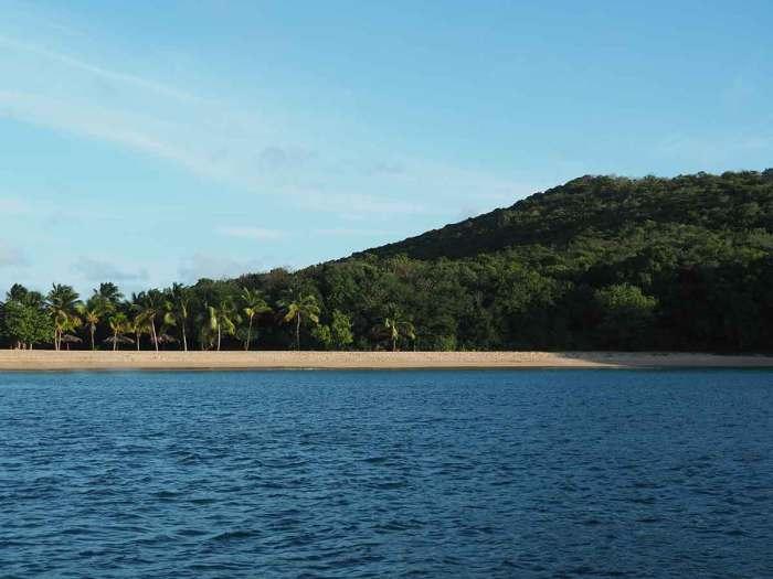 Plage et cocotiers dans Saline Bay, sur Mayreau.