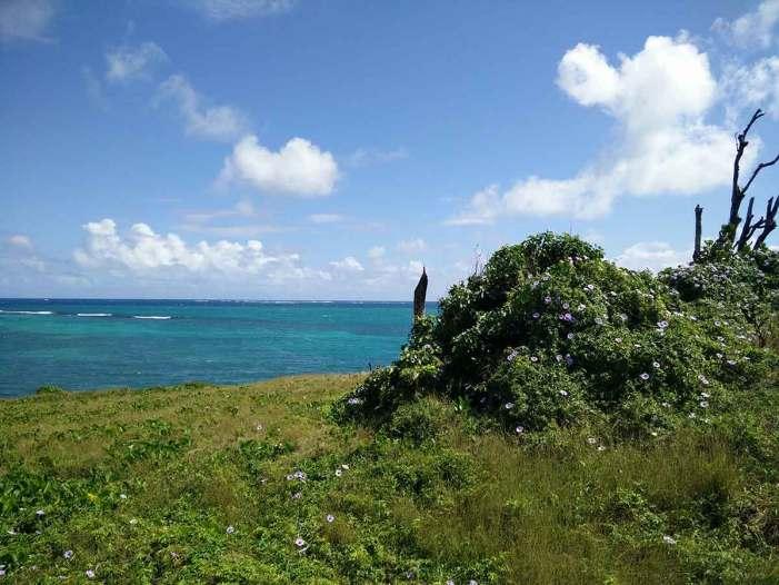 Randonnée le long de la pointe du Vauclin, en Martinique.