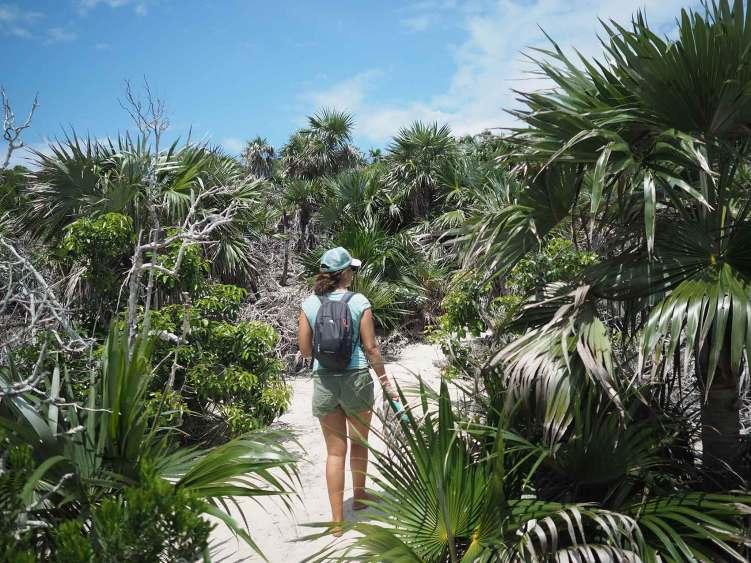 Au coeur de la nature sur l'îlot de Warderick Wells, dans les Exumas aux Bahamas.