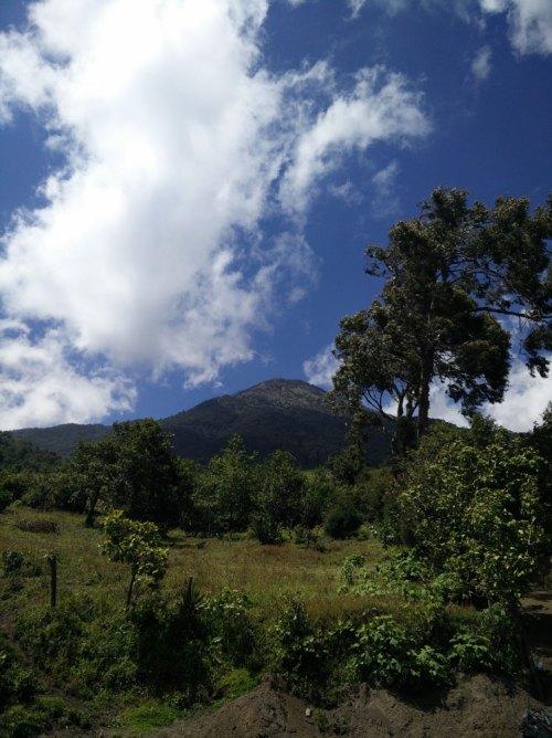 Le volcan Acatenango depuis l'arrêt des bus à 2200 m d'altitude.
