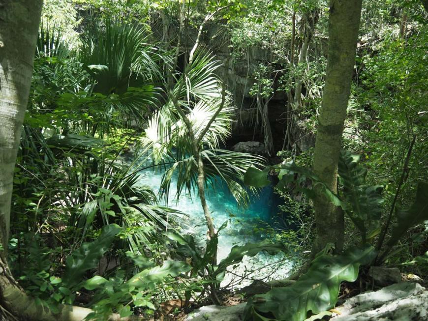 Le cenote X-Batun dans la jungle mexicaine.