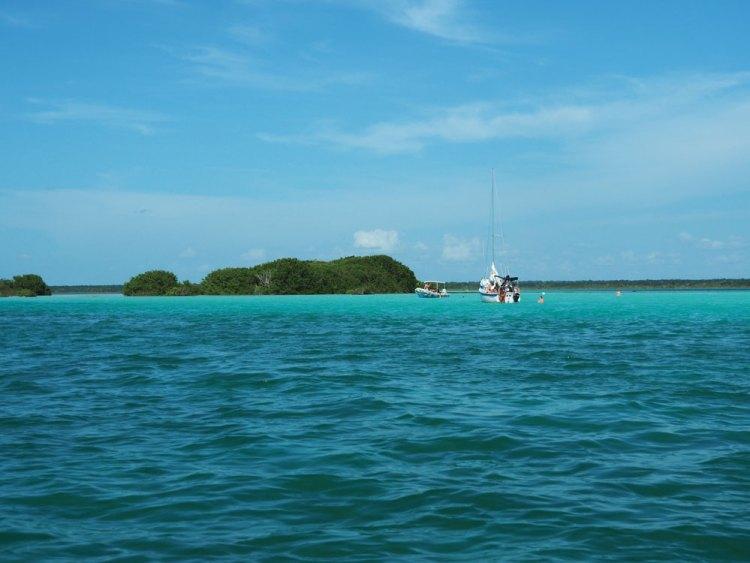 Îles aux oiseaux sur la lagune de Bacalar.