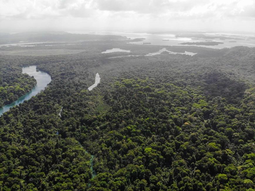Vue sur le lac Gatun et le Rio Chagres au Panama.