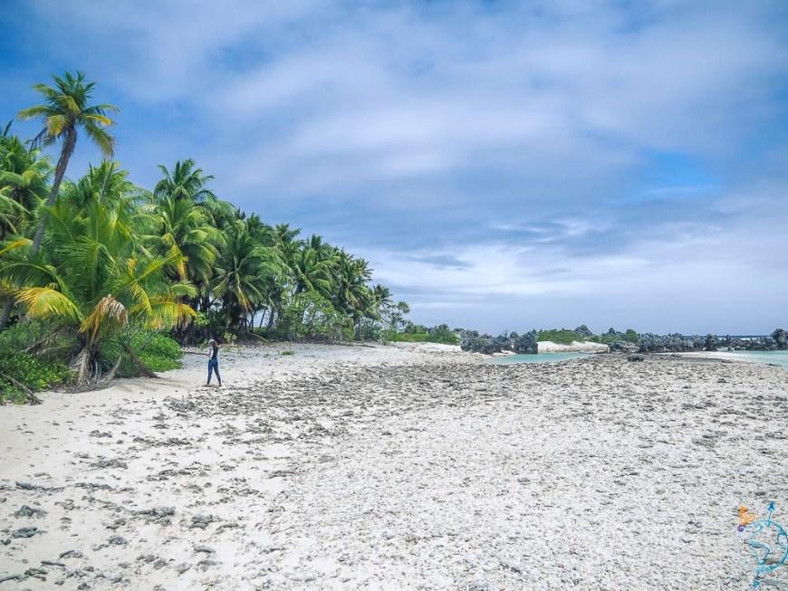Balade sur la plage de l'île aux récifs.