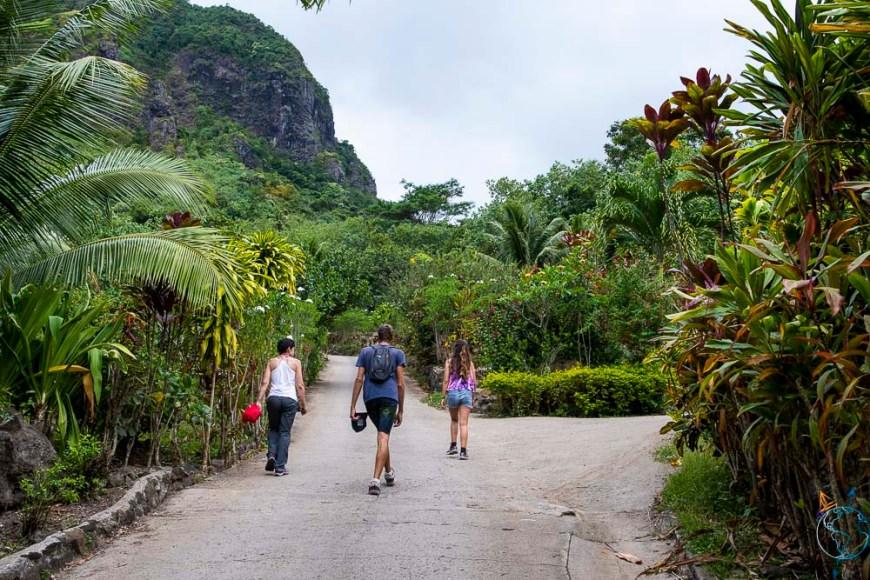 Route qui monte jusqu'au Tropical Garden dans la baie d'Opunohu, à Moorea.