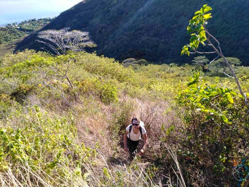 Ascension du mont Rotui sous le soleil.