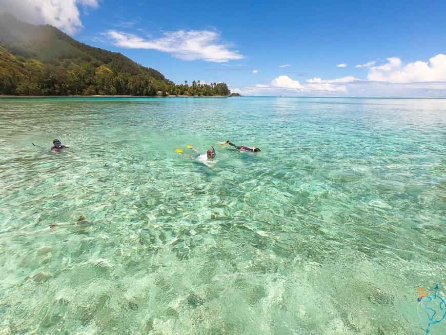 Snorkeling dans l'eau chaude du lagon, près du motu Fareone.