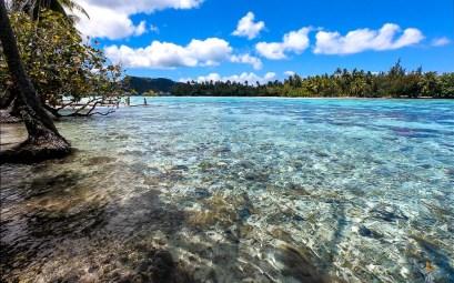 Spot de snorkeling près du motu Tautau à l'ouest de Taha'a.