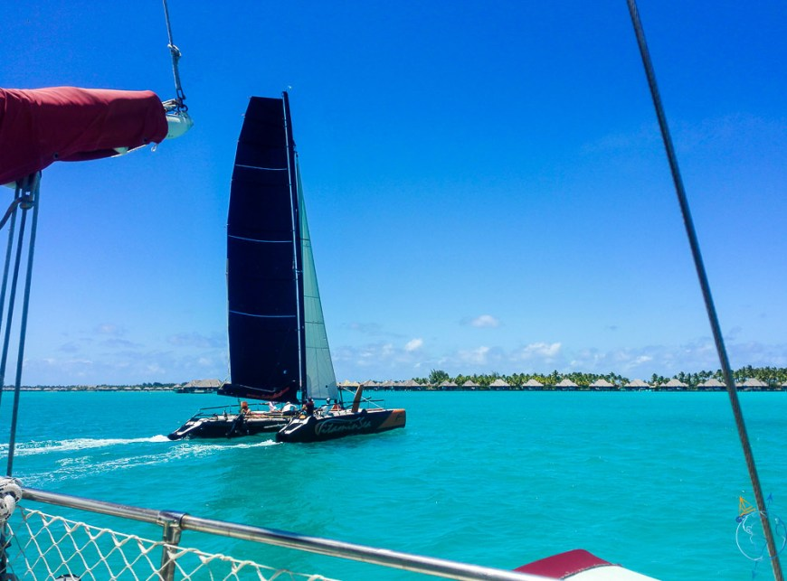 Vitamin Sea, le catamaran de course et de charter à Bora Bora