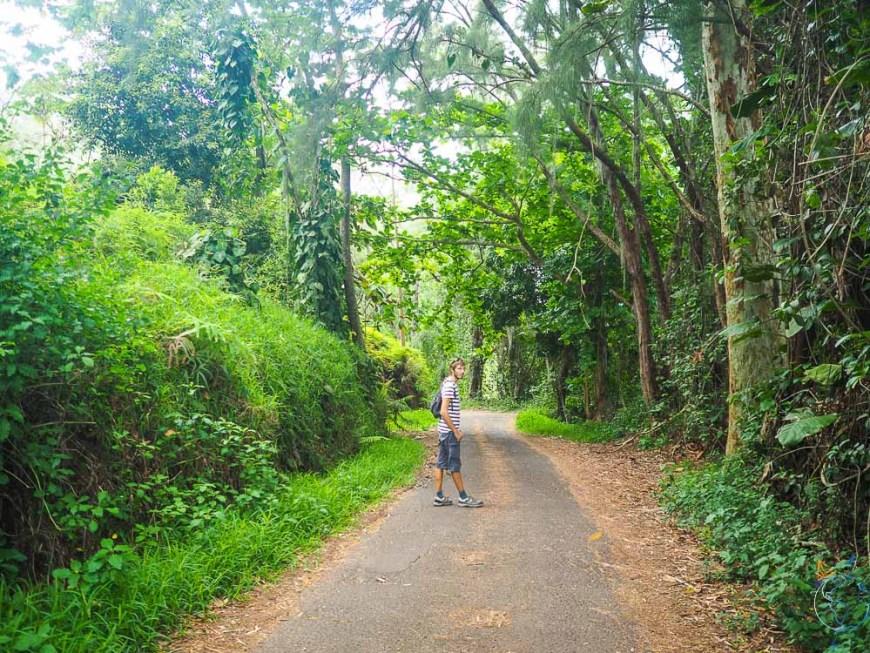 Route menant au belvédère de Pirae sur Tahiti.