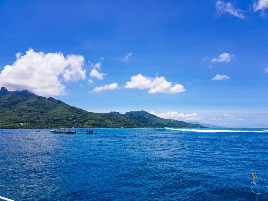 Les surfeurs parés à profiter des vagues dans la passe d'Haapiti sur Moorea.