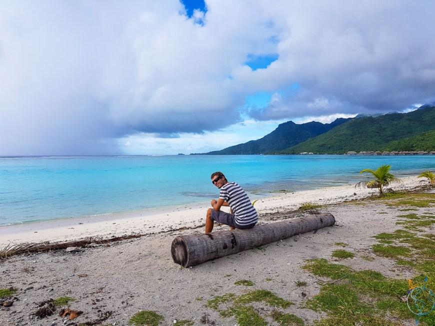 Sur la plage de Temae au nord-est de l'île de Moorea.