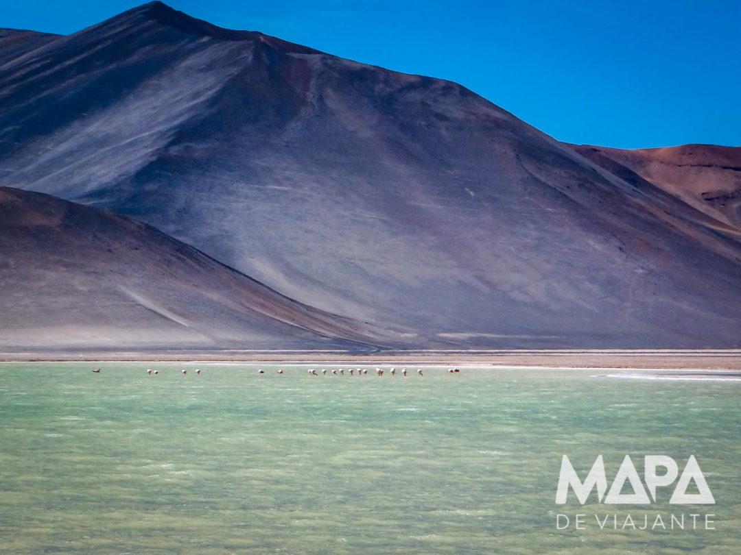 Mapa de Viajante Deserto do Atacama
