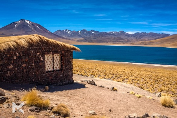 Deserto do Atacama Lagunas Altiplanicas
