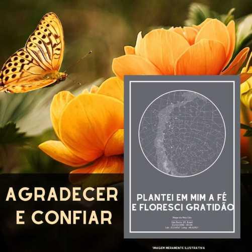 borboleta pousando em flores, com poster do mapa do meu ceu cinza em destaque