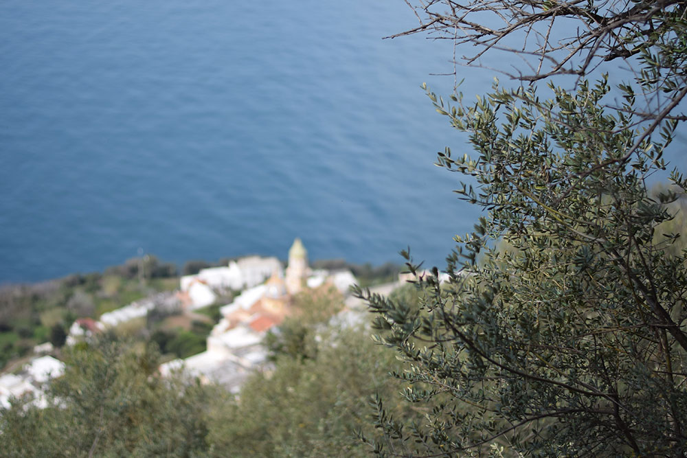 Photo taken from a hiking trail on the Amalfi Coast called The Path of the Gods.