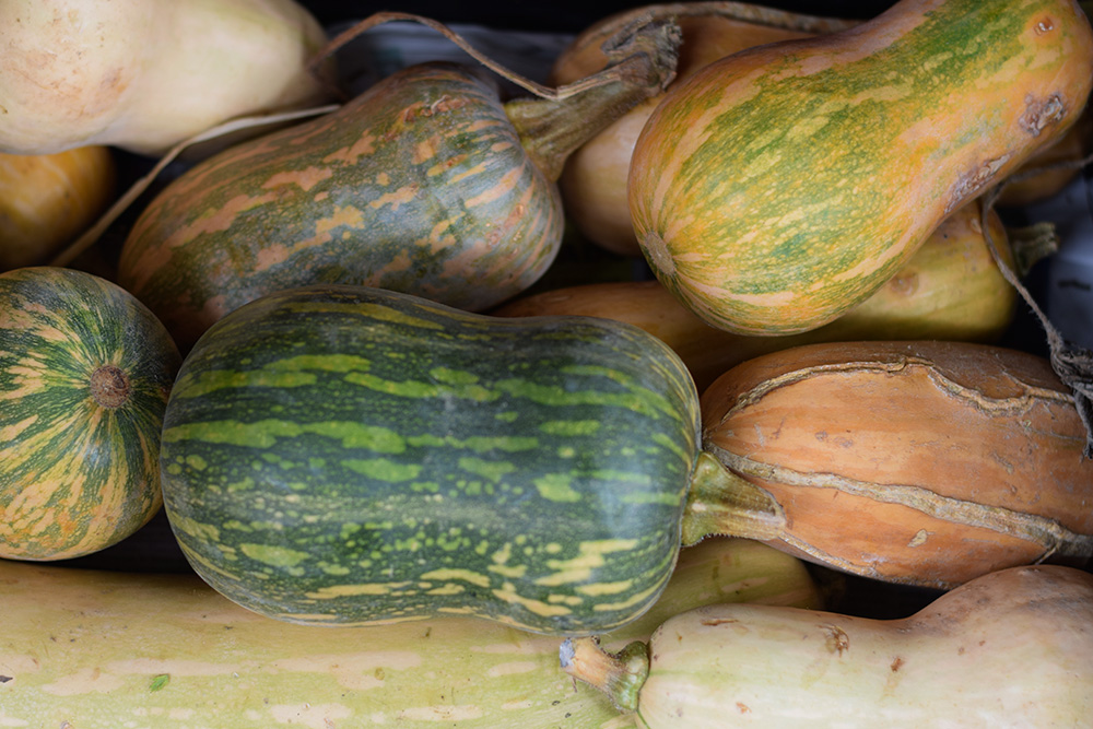 Photograph of a selection of beautiful green, yellow and orange squash at the Santa Maria market in Mallorca, Spain.